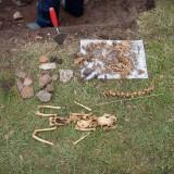 En katt som hittades vid utgrävningen 2009